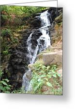 Nature Falls Greeting Card