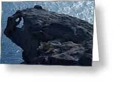 nature Protecter Santorini Island Greeting Card