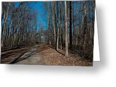 Nature Walk Greeting Card