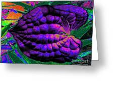 Nature's Abstract Digital Art Greeting Card