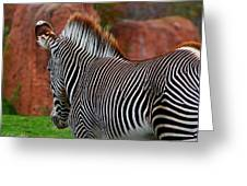Nature's Barcode Greeting Card