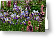 Natures Bouquet Greeting Card