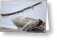 Natures Ice Sculptures 3 Greeting Card