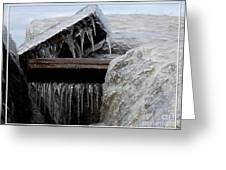Natures Ice Sculptures 5 Greeting Card