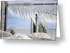 Natures Ice Sculptures1 Greeting Card