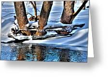 Nature's Icy Abstract No.2 Greeting Card