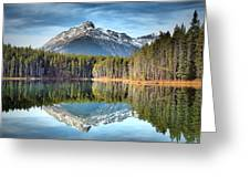 Nature's Reflections Greeting Card