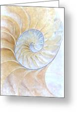 Nautilus Frost Greeting Card