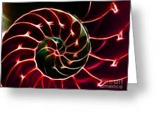 Nautilus Shell - Electric - V2 - Red Greeting Card