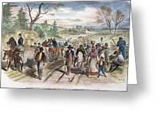 Nc: Freed Slaves, 1863 Greeting Card