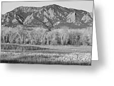 Ncar And Flatiron View Boulder Colorado Bw Greeting Card
