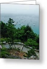 Ne Harbor Maine Seen From Thuya Gardens Mt Desert Island  Greeting Card