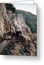 Near The Bagatski Bridge - Caucasus - Russia Greeting Card