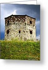 Nebojsa Tower In Belgrade Greeting Card