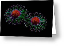 Neon Daises Greeting Card