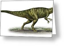 Neovenator Salerii, A Prehistoric Era Greeting Card