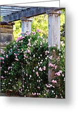 Never Promised You A Rose Garden... Greeting Card