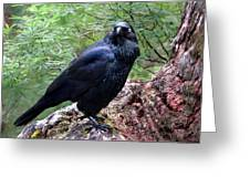 Nevermore Greeting Card