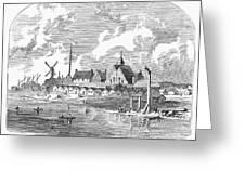 New Amsterdam, 1650 Greeting Card