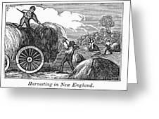 New England: Harvest, 1830 Greeting Card