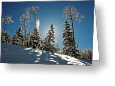 New Fallen Snow Greeting Card