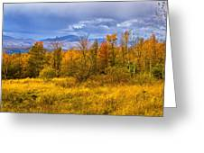 New Hampshire Fall Color Part Deux Greeting Card