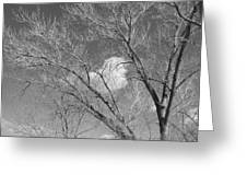 New Mexico Series - A Cloud Behind Black And White Greeting Card