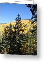 New Mexico Series - Autumn On The Mountain II Greeting Card