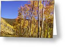 New Mexico Series - Autumn On The Mountain Greeting Card
