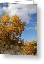 New Mexico Series - Desert Landscape Autumn Greeting Card