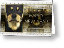 New Year - Golden Elegance Australian Kelpie Greeting Card by Renae Laughner