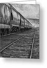 Next Tracks In Black And White Greeting Card