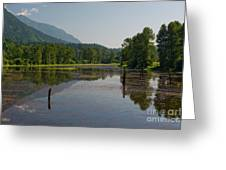Nicomen Slough 2 Greeting Card