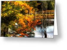 Niels' Third Pond Greeting Card