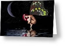 Night Reflection Greeting Card by Diana Shively