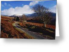 Nire Valley Drive, County Waterford Greeting Card