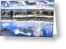 Nisqually Wildlife Refuge P13 Greeting Card