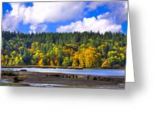 Nisqually Wildlife Refuge P24 Greeting Card