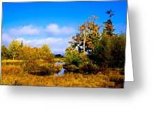 Nisqually Wildlife Refuge P25 Greeting Card