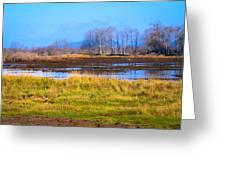 Nisqually Wildlife Refuge P5 Greeting Card