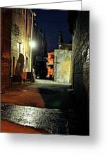 No Alley Cats Tonight Greeting Card