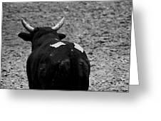 No Bull Greeting Card