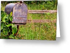 No Mail Today Greeting Card