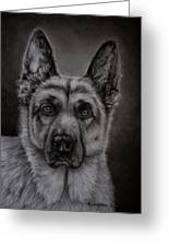 Noble - German Shepherd Dog  Greeting Card