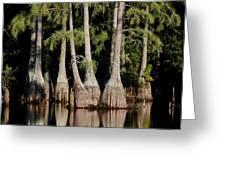 North Carolina - Lake Greeting Card