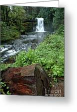 North Falls In Oregon Greeting Card