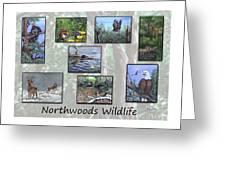 Northwoods Wildlife Greeting Card