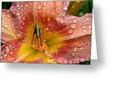 Nursery School Daylily Greeting Card