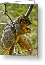 Nuts And Seeds Make A Great Lunch Greeting Card
