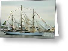 Nve Cisne Branco Passing By Fort Mchenry Greeting Card